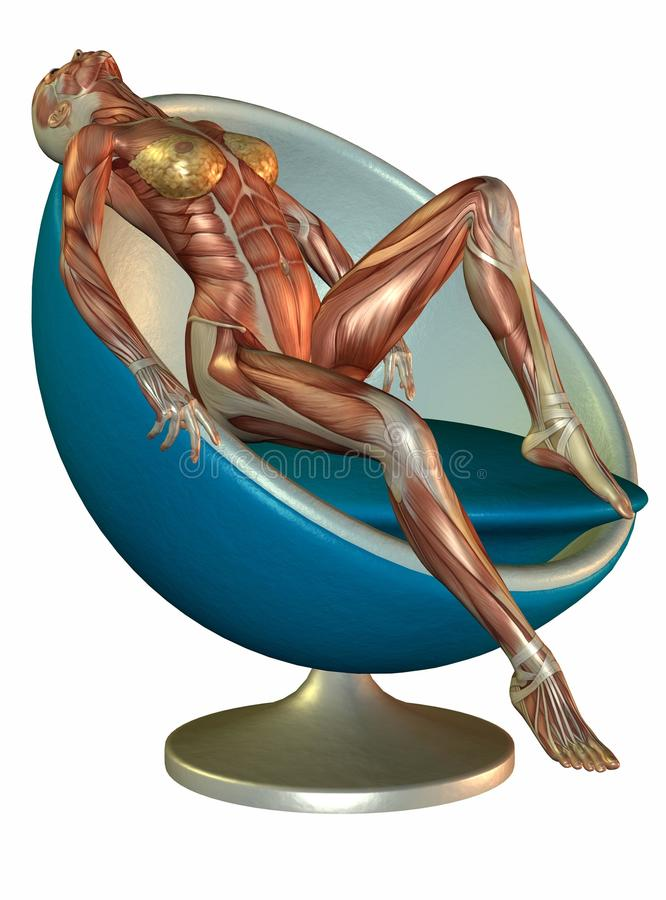 Download Anatomical woman in chair stock illustration. Image of relaxes - 14933115