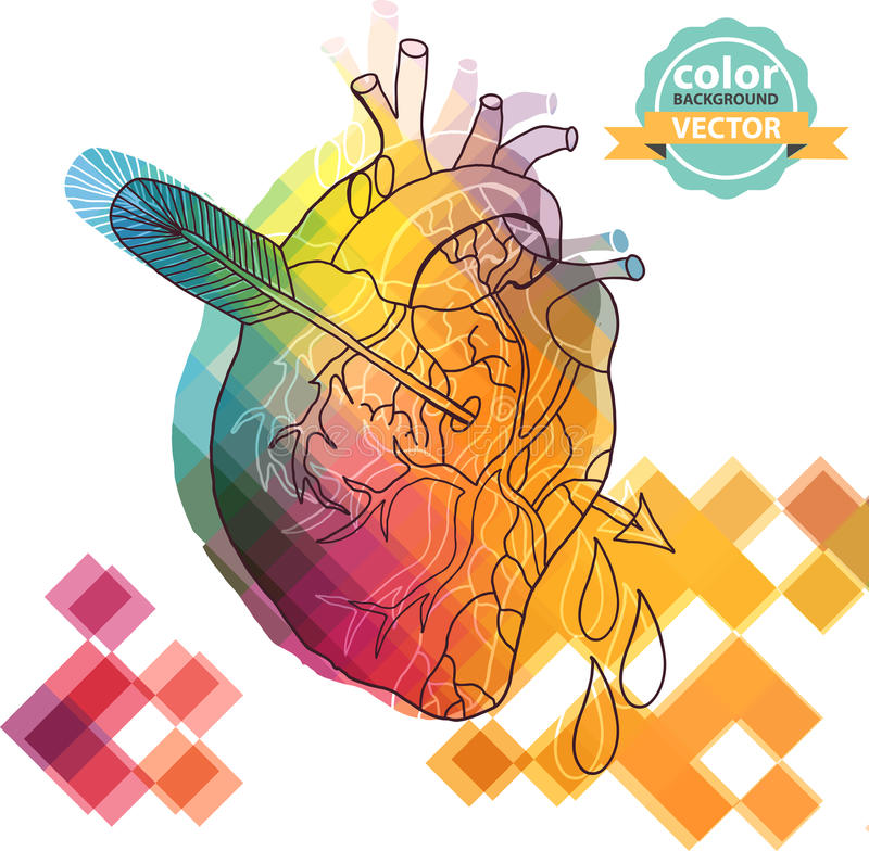 Anatomiczny koloru serce z strzała royalty ilustracja