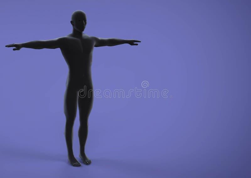 Anatomie d'humérus illustration stock