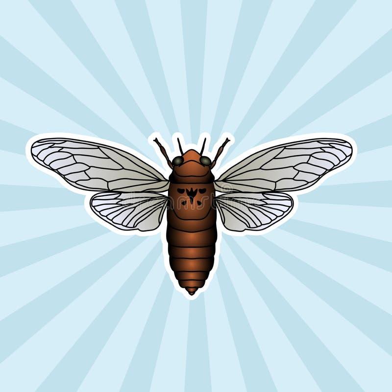 Anatomie d'insecte Cigale d'autocollant Cicadidae Umbrosa de Chremistica Croquis de cigale conception de cigale pour livre de col photos libres de droits