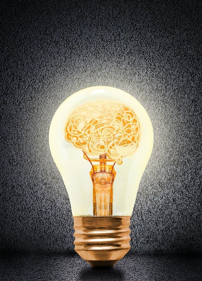 Anatomie de Brain Glowing Inside Light Bulb humain photo stock