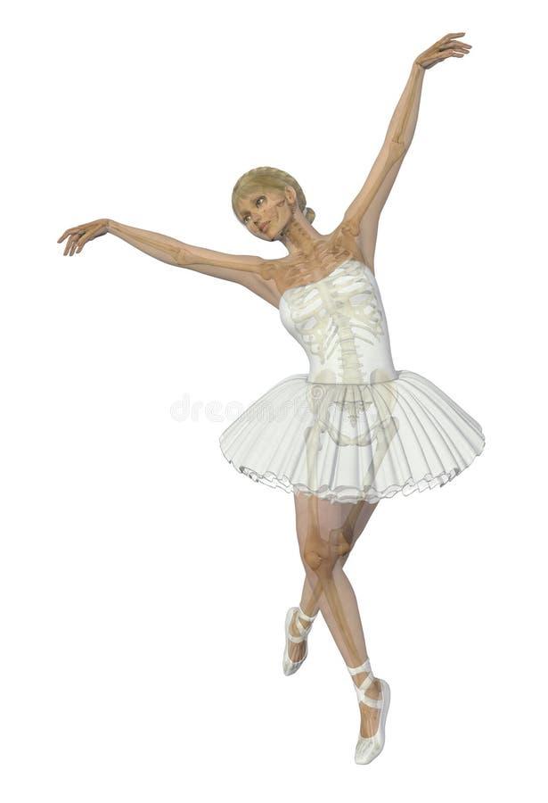 Anatomie et mouvement - ballet illustration libre de droits