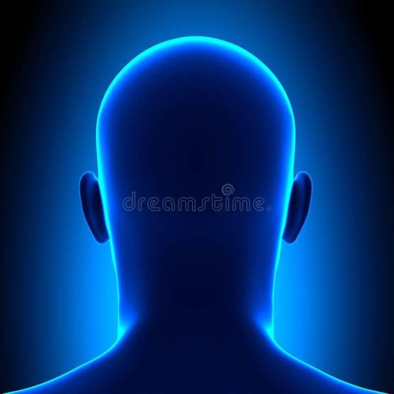 Anatomihuvud - tillbaka sikt - blått begrepp stock illustrationer