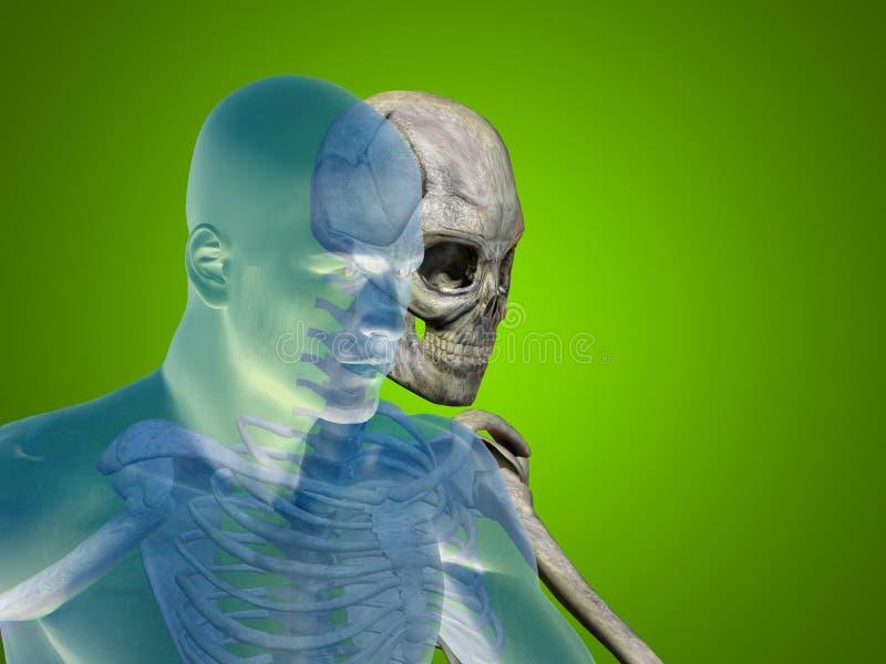Anatomii pojęcia ludzkiego mężczyzna zdrowie ciała medyczna klatka piersiowa ilustracja wektor
