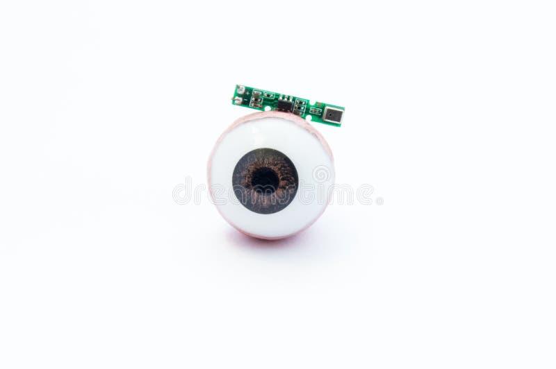 Anatomisch model van menselijke oog of oogappel met digitale kunstmatige microchip op witte achtergrond Behandeling van visieverl royalty-vrije stock afbeelding