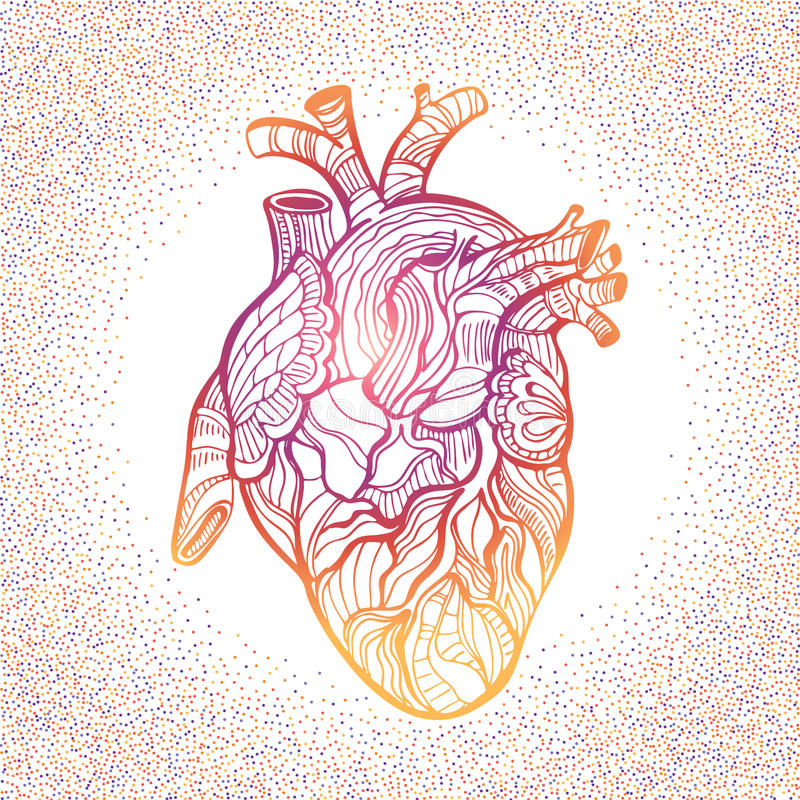 Anatomisches Herz Der Handzeichnungs-Skizze Gekritzel Zentangle ...
