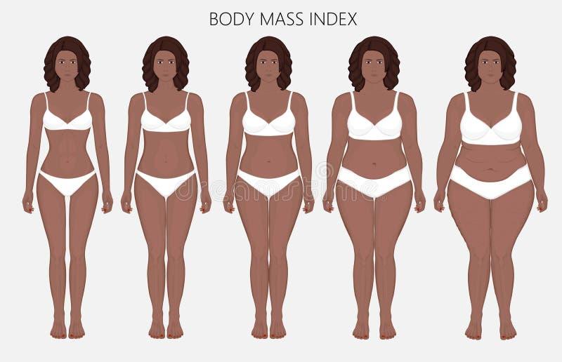 Anatomy_Body massindex för människokropp av afrikanska kvinnor från brist av royaltyfri illustrationer