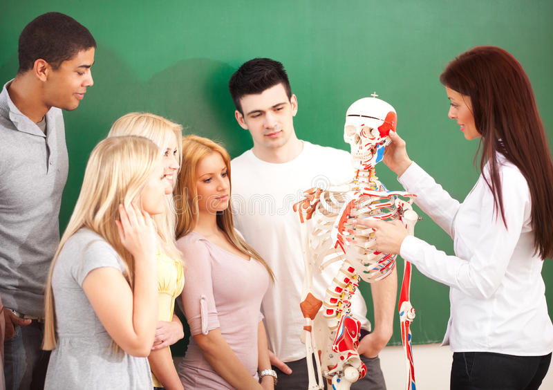 Anatomy Class. Anatomy teacher and her students in class stock image