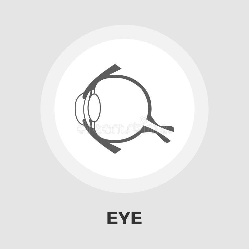 Anatomy eye flat icon. Anatomy eye icon vector. Flat icon isolated on the white background. Editable EPS file. Vector illustration vector illustration