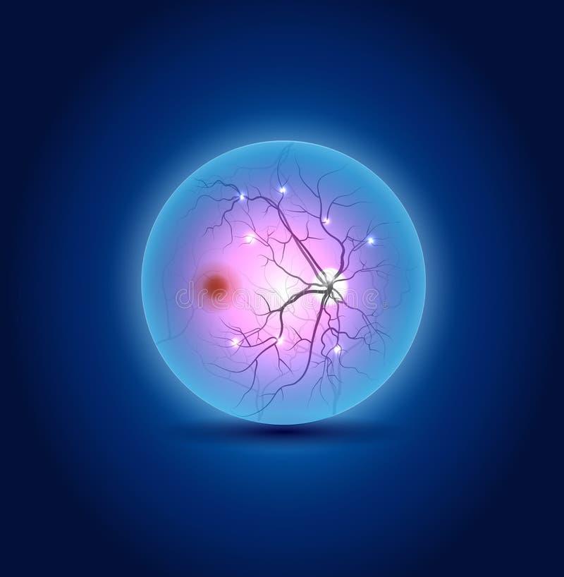 Anatomy of the eye fundus. Beautiful blue design vector illustration