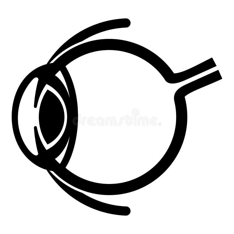Anatomy of eye icon, simple style. Anatomy of eye icon. Simple illustration of anatomy of eye vector icon for web royalty free illustration