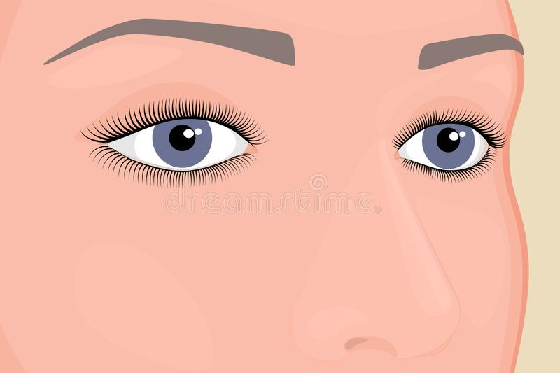 Anatomy_Eyes ilustracja wektor