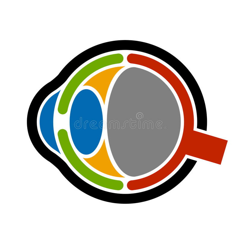 Anatomy human eye icon royalty free illustration