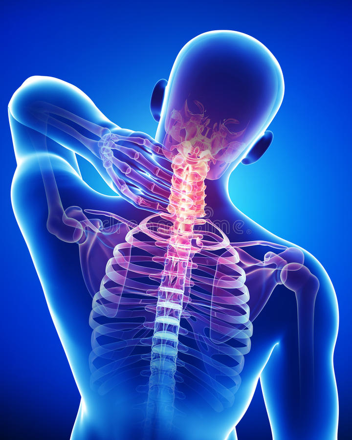 Anatomy of male back and neck pain in blue stock illustration