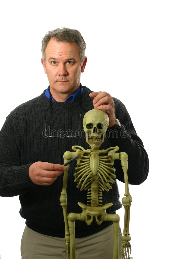Anatomy Professor with skeleton stock images
