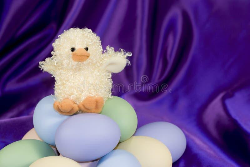 Anatra di Pasqua con le uova - orizzontali fotografie stock