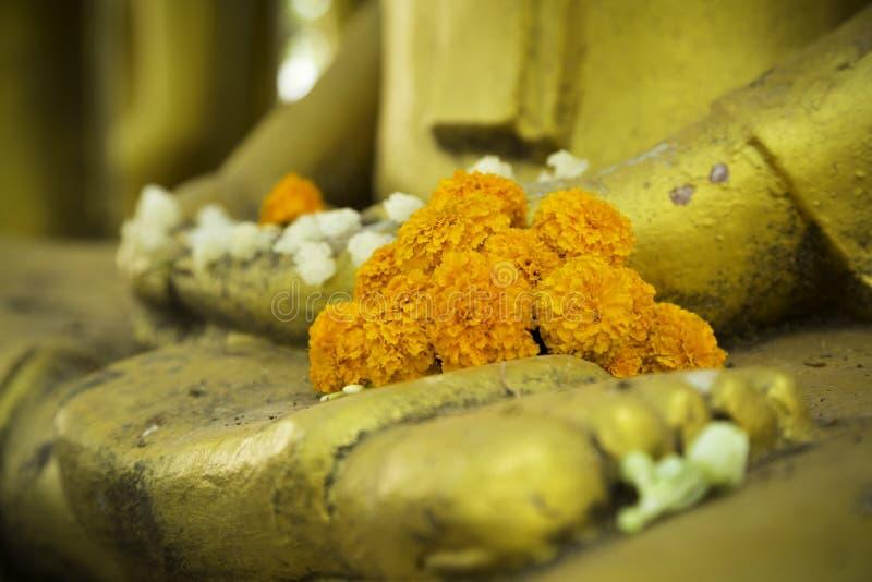 Anbetung Buddha stockfotos
