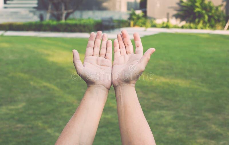 Anbetungsgottkonzept, Leute öffnen leere Hände mit Palmen oben stockbilder