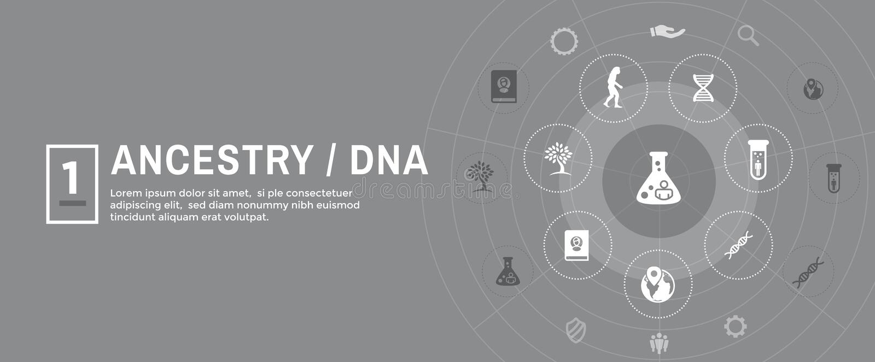 Ancestry or Genealogy Icon Set web banner w Family Tree Album, f. Ancestry / Genealogy Icon Set web banner with Family Tree Album, family record, etc vector illustration