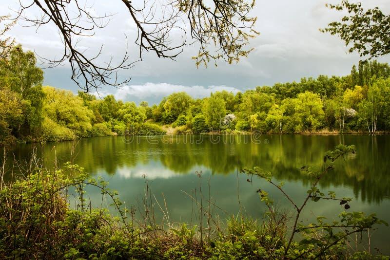 Anche cade sopra il lago verde fotografie stock