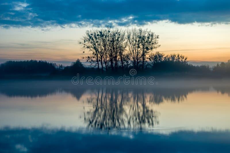 Anche nebbia sopra il lago e la riflessione degli alberi nell'acqua immagini stock libere da diritti