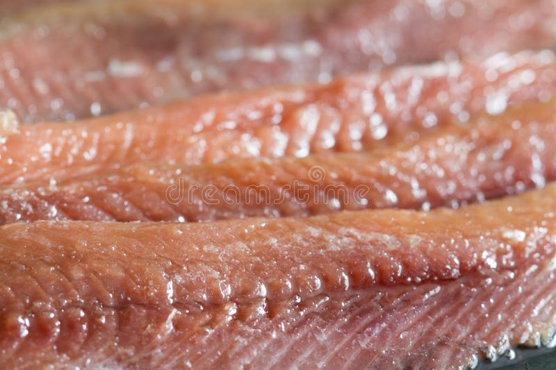 Anchois fisch fillet in oil closeup. Macro stock images