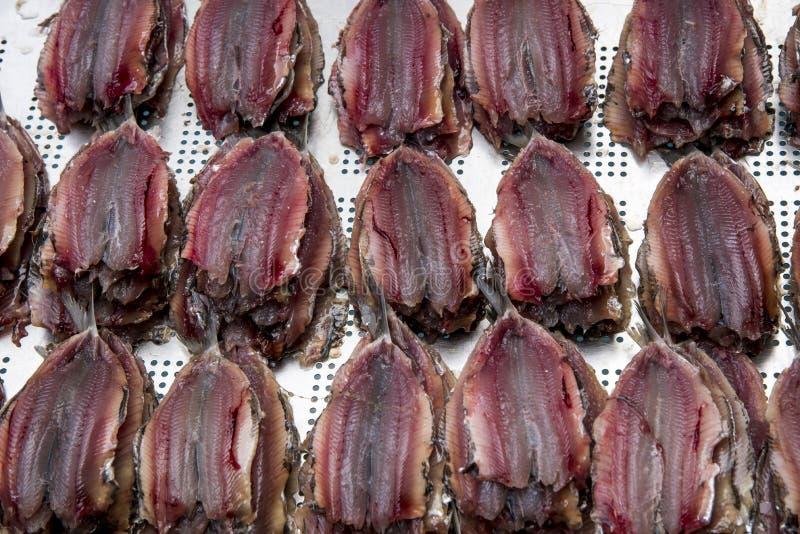 Anchois mariné - sardines salées photos stock