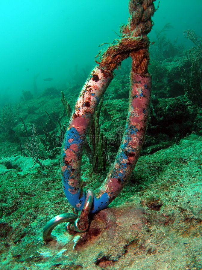 Download Anchor to Mooring Buoy stock photo. Image of giant, colourful - 7521192