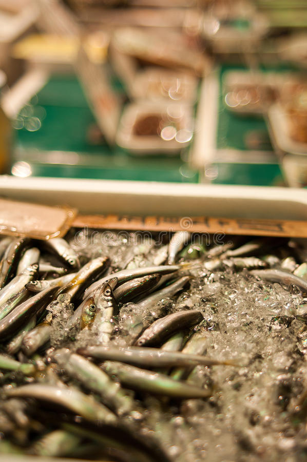 Download Anchovies stock image. Image of fresh, market, kyoto - 24126273