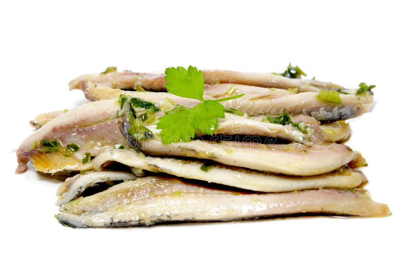 Anchovies in vinegar royalty free stock images