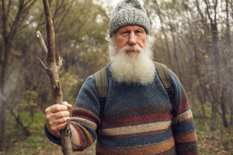 Ancião com a barba na floresta fotos de stock