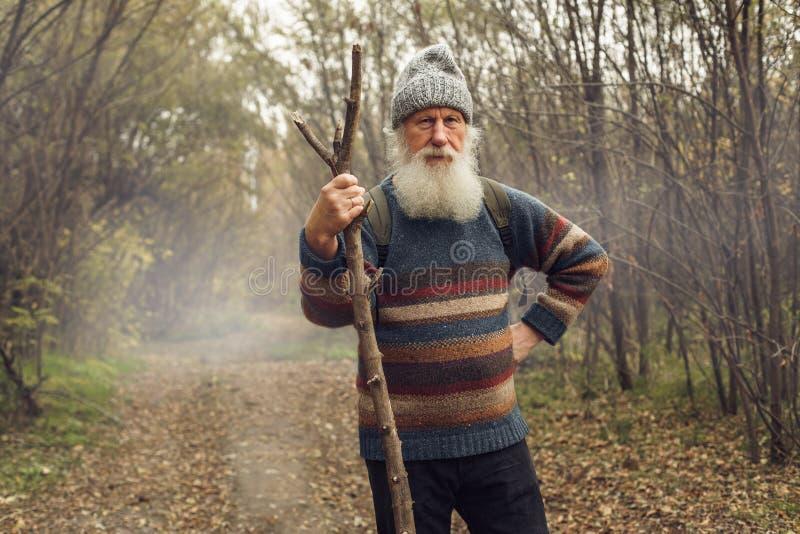 Ancião com a barba na floresta foto de stock royalty free