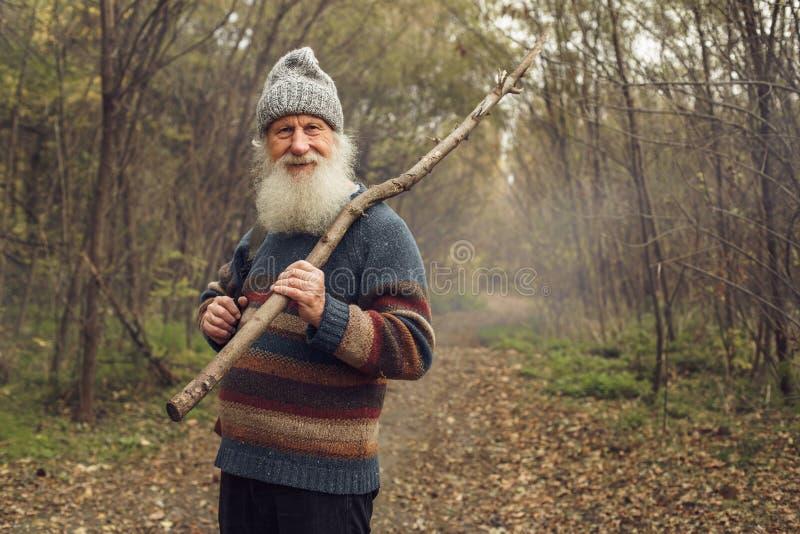 Ancião com a barba na floresta fotos de stock royalty free