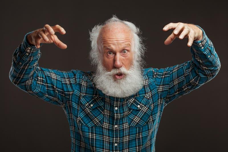 Ancião com um sorriso grande do wiith longo da barba fotografia de stock royalty free