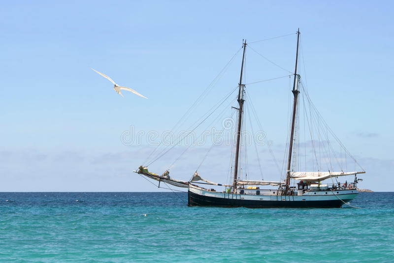 Ancient boat and seagull. Seagull is flying in font of the ancient sailing boat . The sky area is free for your text royalty free stock photo