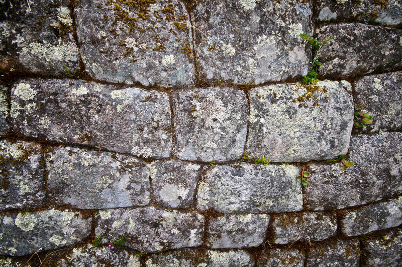 Download Ancient brick wall stock photo. Image of inside, room - 21526450