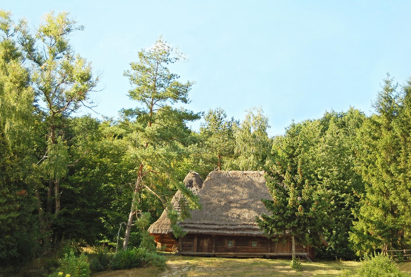 Download Ancient Carpatian Hut In Forest Stock Photo - Image: 22890842