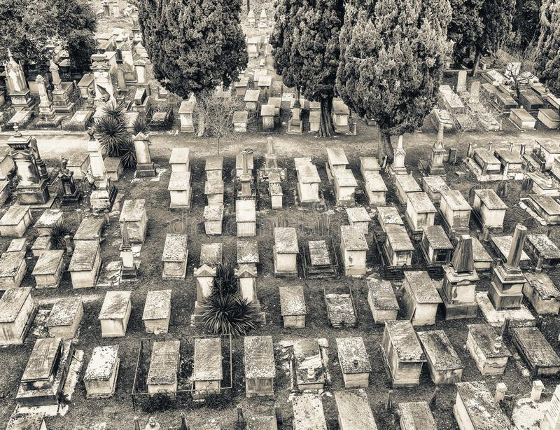 Ancient cemetery near Square of Miracles, Pisa - Italy royalty free stock photography