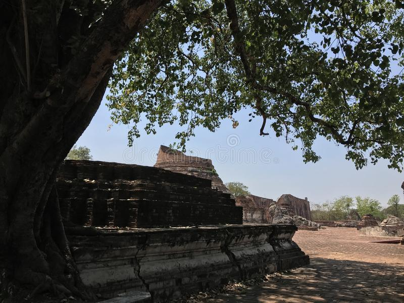 Ancient city of Ayutthaya the second capital of the Siamese Kingdom. The city wad razed destroyed by the Burmese now an archaeological ruin, characterized by stock images