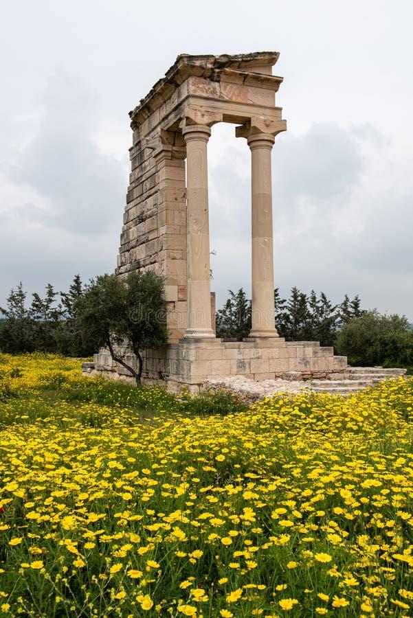 Ancient columns of Apollon Hylates,  sanctuary in Limassol district, Cyprus stock photo