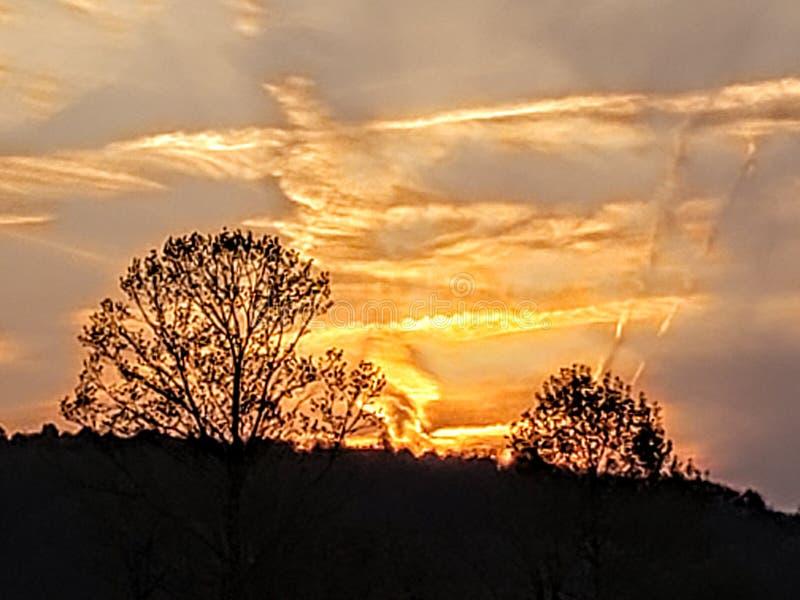 Eagle from the sunset. Eagle from the. Sunset, eagle, nature, beauty, pennsylvania, naturesbeauty stock images