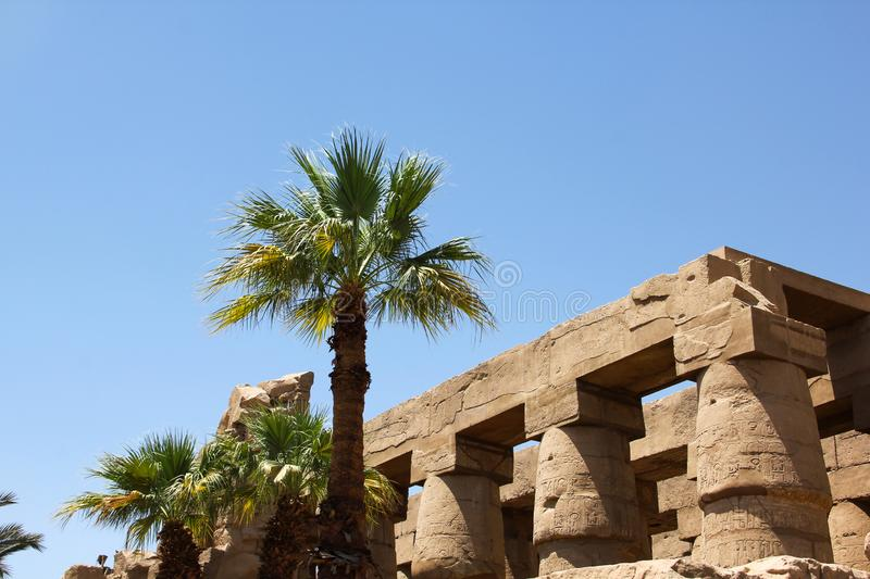 Ancient Egyptian architecture and palm trees at Karnak Temple Complex in Luxor. Color photo of  landmark photo taken in egypt clear weather royalty free stock photos