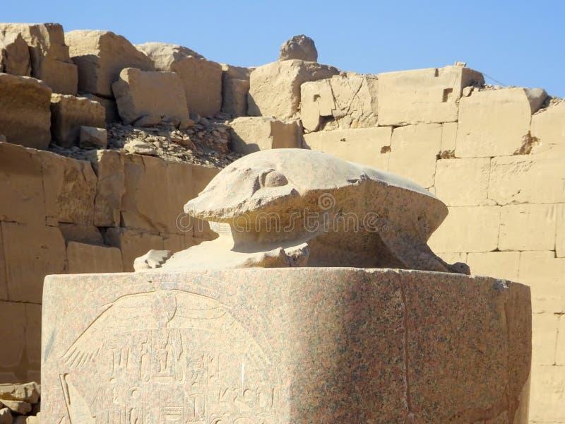 Ancient Egyptian temples scarabus sculpture. Scarabus sculpture in the Ancient Egyptian temple royalty free stock photos