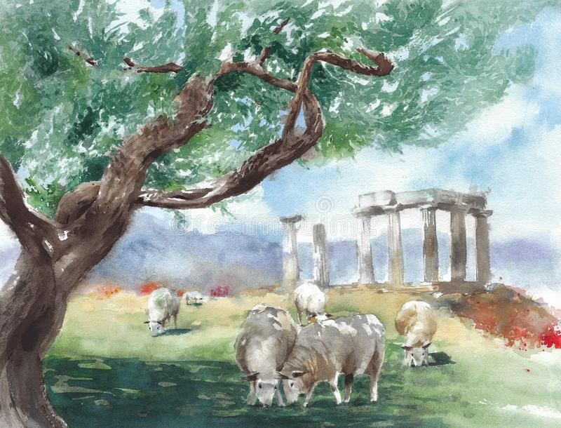 Ancient Greece ruins temple of Apollo Corinth sheep herd olive tree watercolor painting illustration vector illustration
