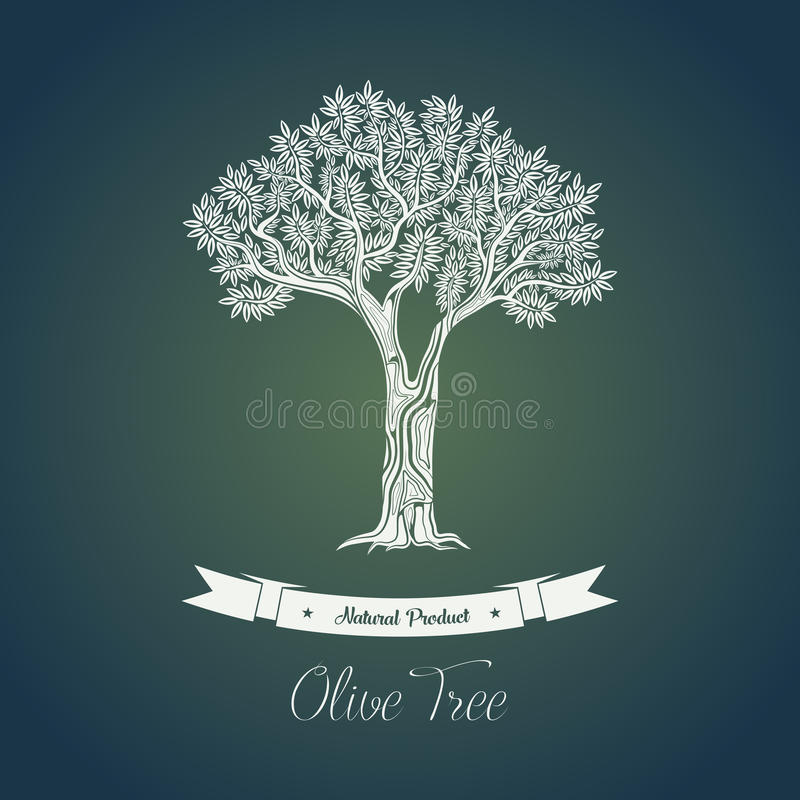 Ancient greek olive oil tree in grove. Ancient greece olive oil tree in grove for bottle sticker. Mediterranean plant with fruits and berries for making olive royalty free illustration