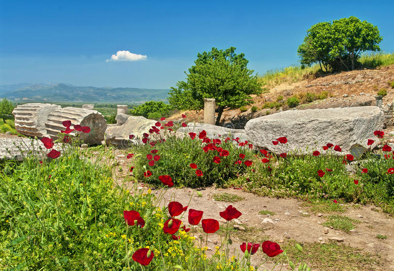 Ancient greek ruins with poppy flowers stock image image of grass pieces of ancient marble greek columns in ephesus with blooming poppy flowers turkey mightylinksfo
