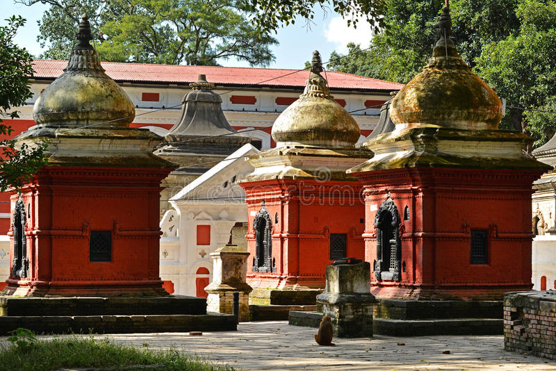 Ancient Hindu temple in Pashupatinath before the earthquake that. PASHUPATINATH - OCTOBER 10: Ancient Hindu temple, now collapsed after the earthquake that hit stock photos