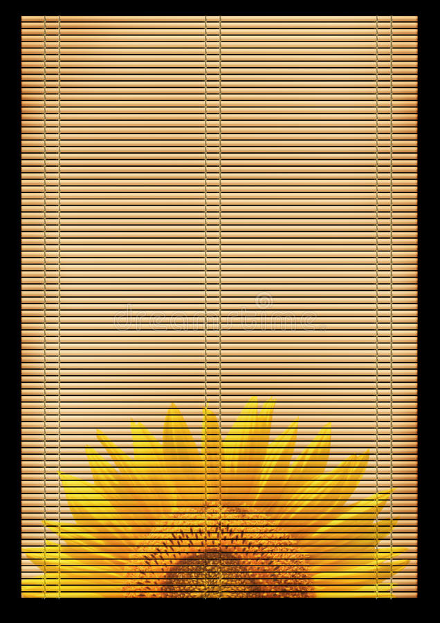 Download Ancient Japanese reed mat stock illustration. Image of illustration - 12926598
