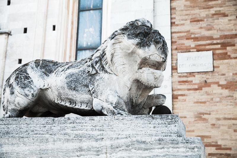 Ancient lion, white weathered statue. Fermo stock photos