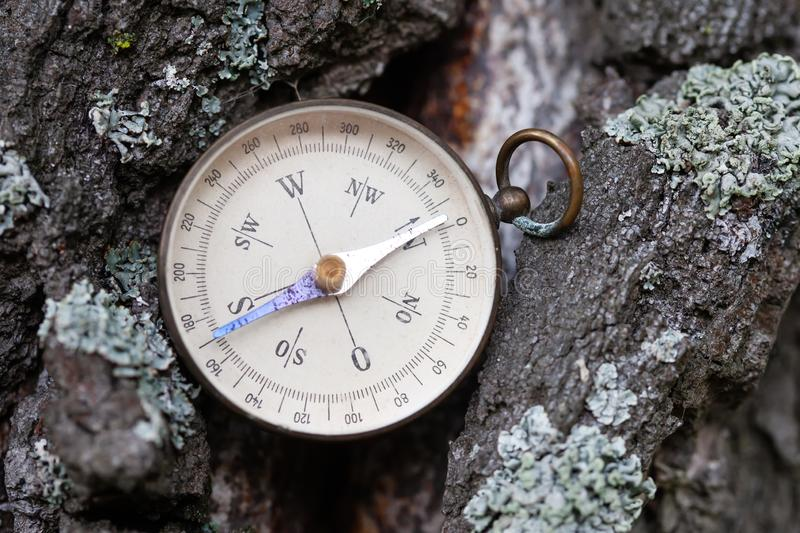 Ancient magnetic exploration compass on a background of pine tree bark. Retro navigator tool for sports and tourist stock photo